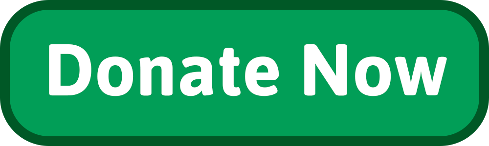 5_Donate-now-button